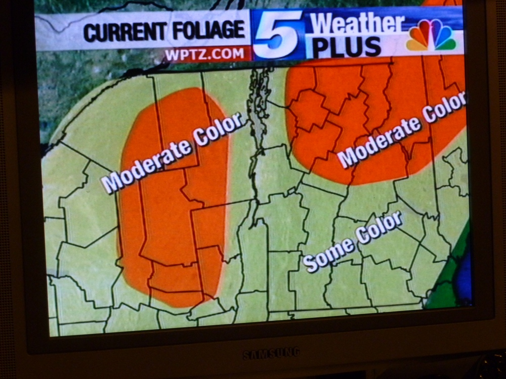 Foliage report on TV