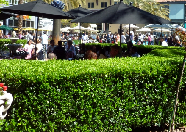 A hedge creates a space for people to talk and dine.