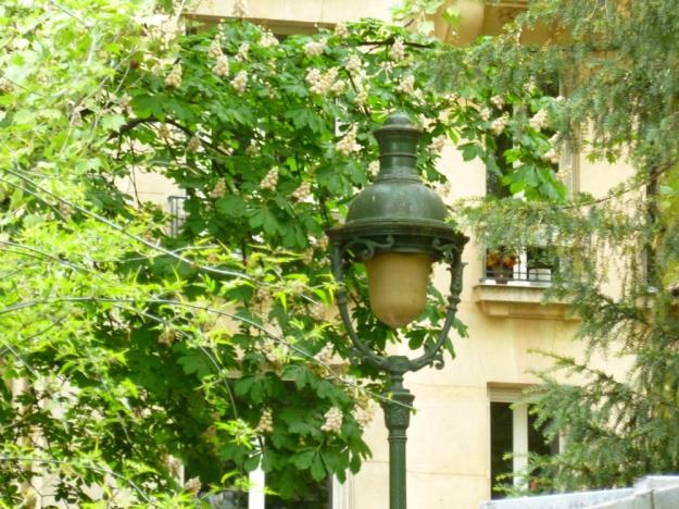 A lamp in Le Champs de Mars