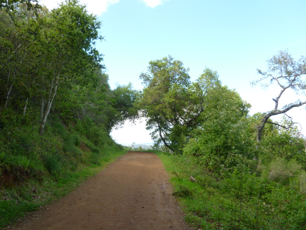 Paths 2