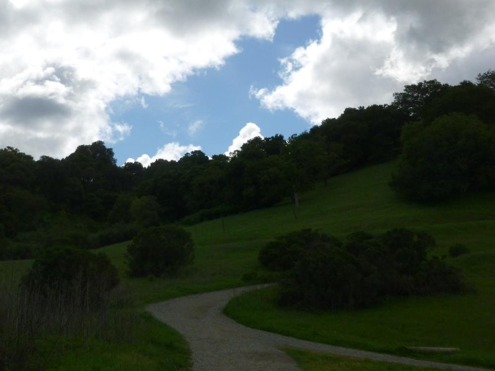 Paths 4
