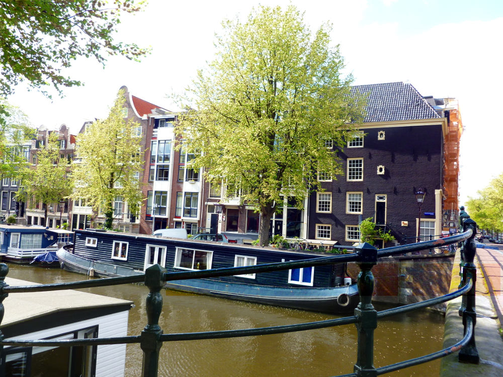 Houses along the canal