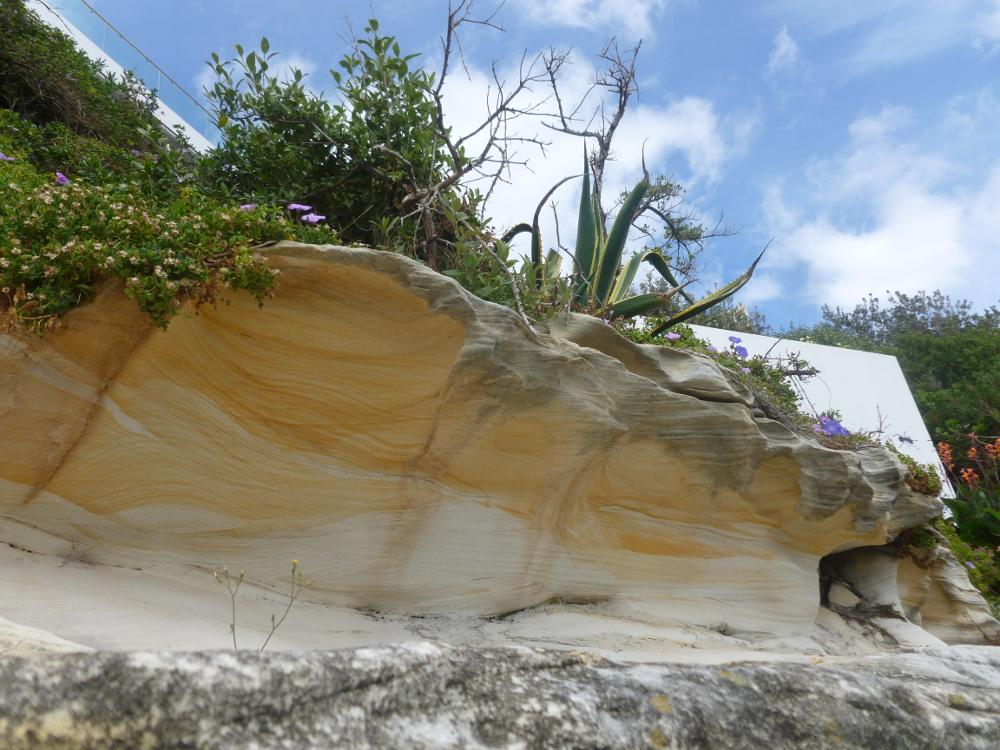 Natures sculpture