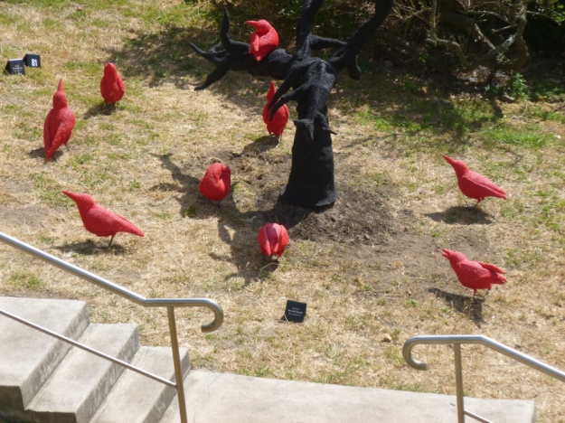 Red crows