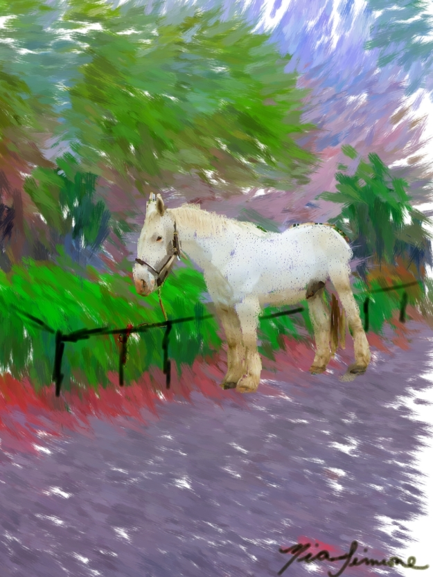 Horse at the park