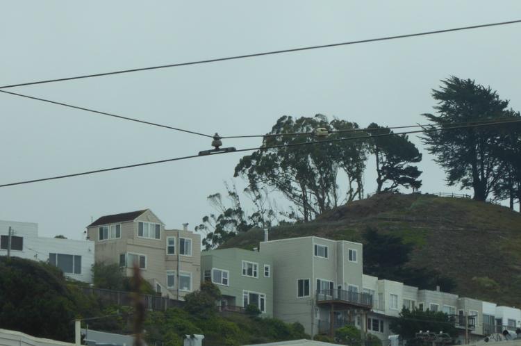 19th-avenue-San-Francisco
