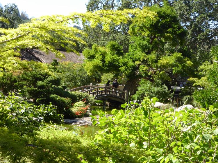 hakone-gardens-saratoga-bridge2