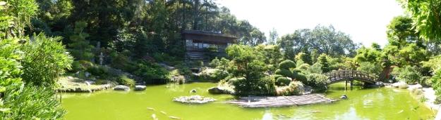hakone-gardens-saratoga-panorama