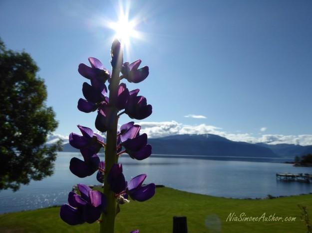 Balestrand-Fjordland-Norway-16