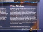 Kon-Tiki-Thor-Heyerdahl21