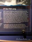 Kon-Tiki-Thor-Heyerdahl23