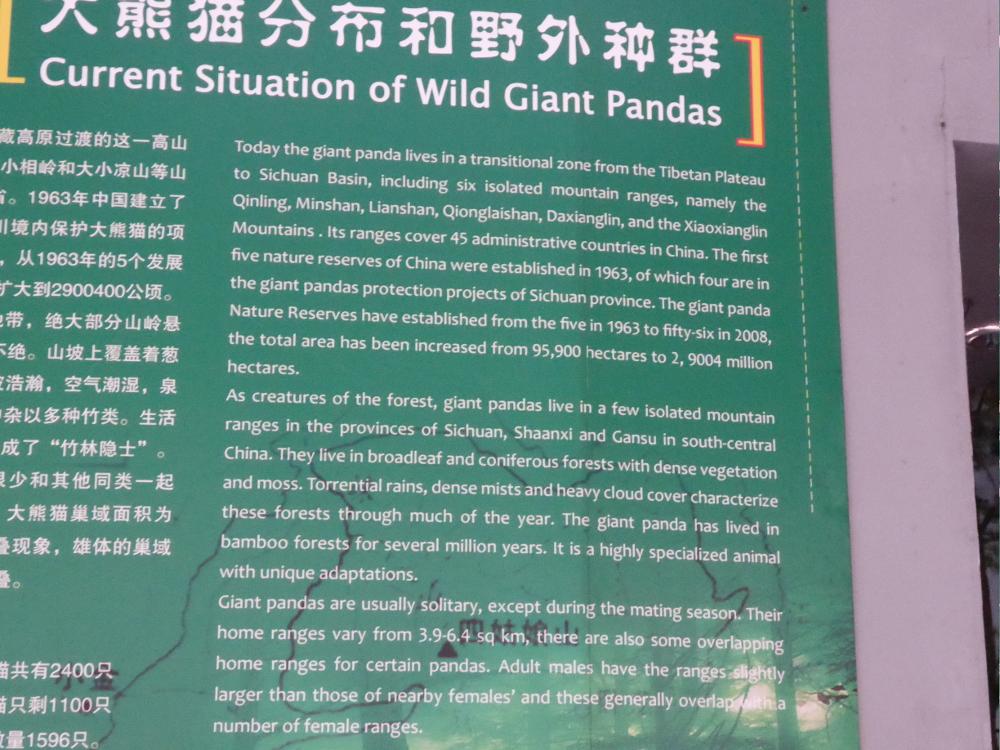 Beijing-Pandas