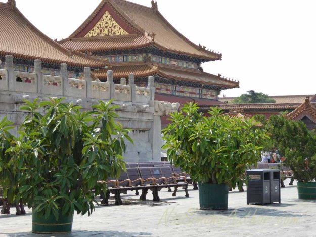 Forbidden-City-China-20
