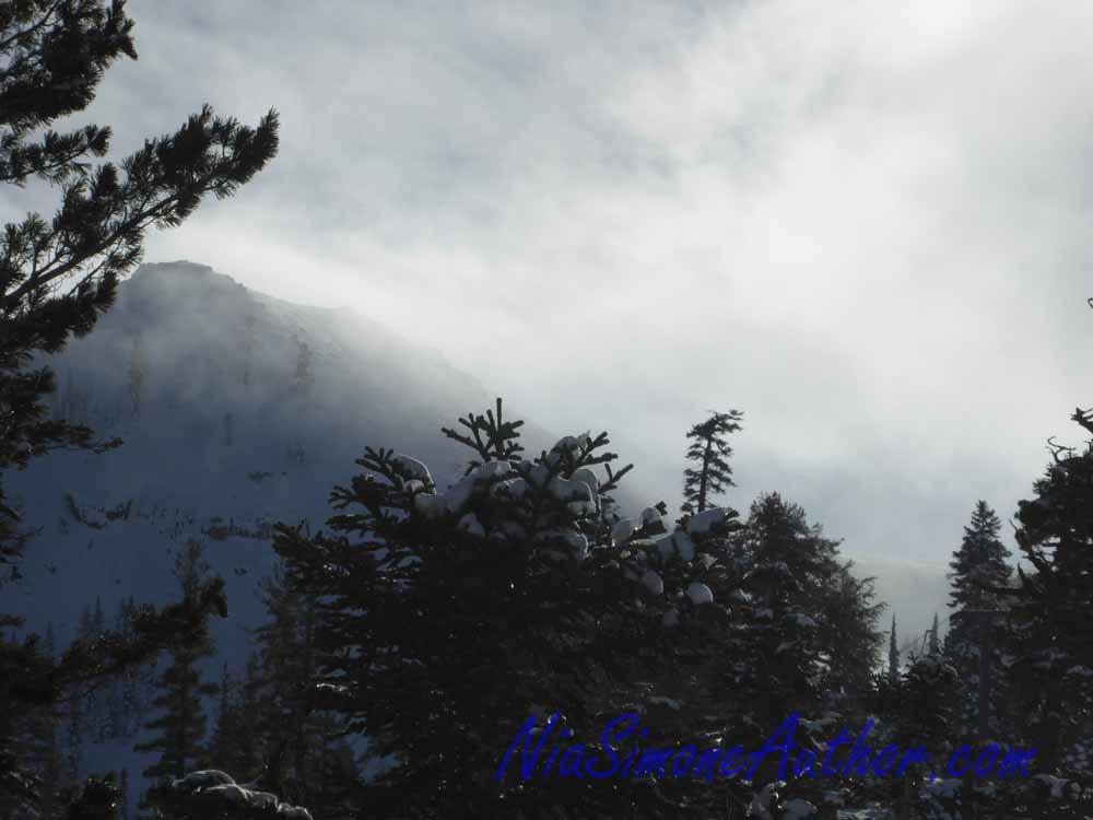 Alpine-Meadows-25