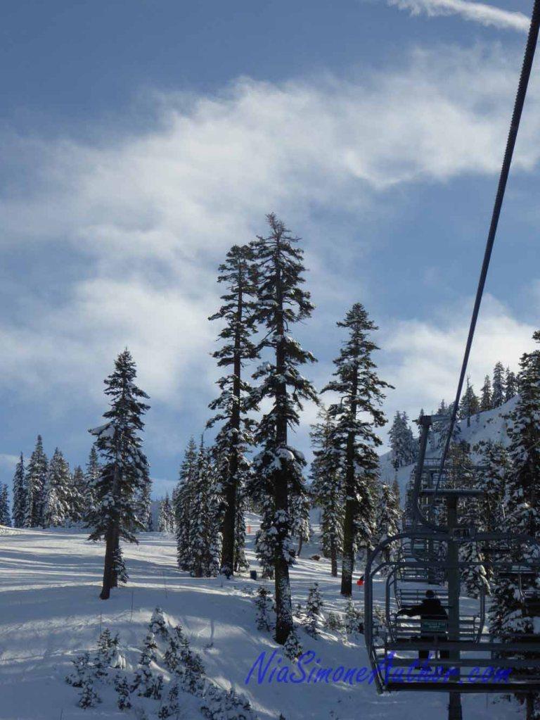 Alpine-Meadows-30