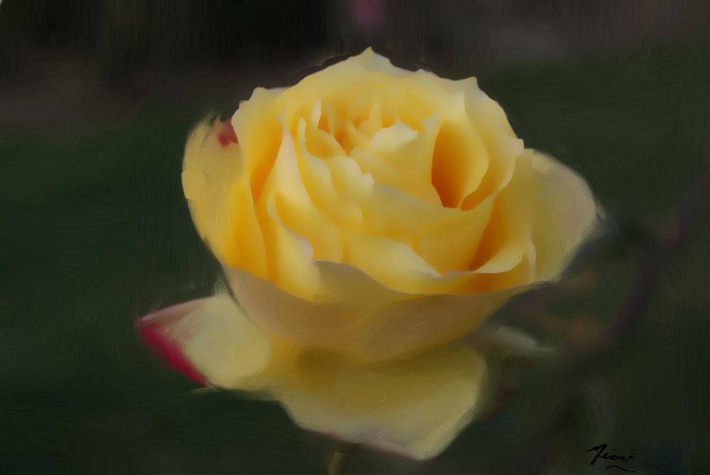 Yellow-rose_Painting