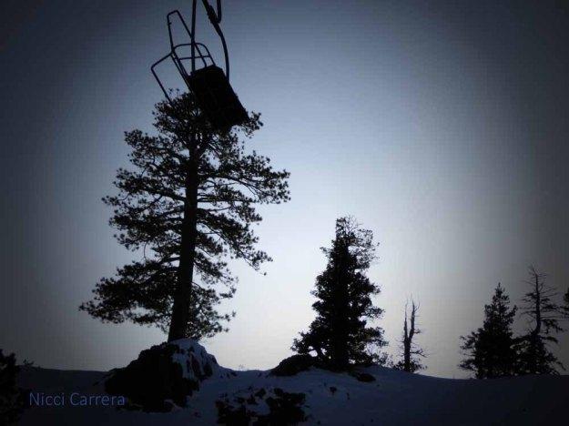 Alpine-Meadows-3