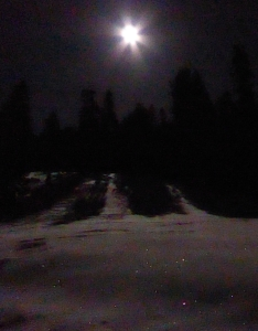 Moonlight-on-snow