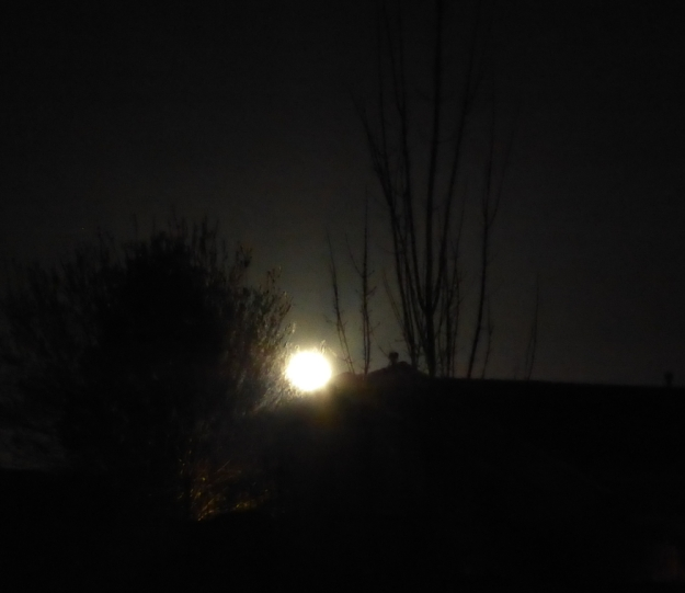 Moonrise in March