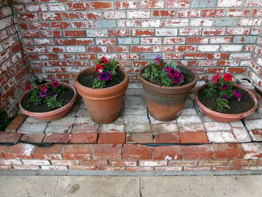 Flower-pots-1