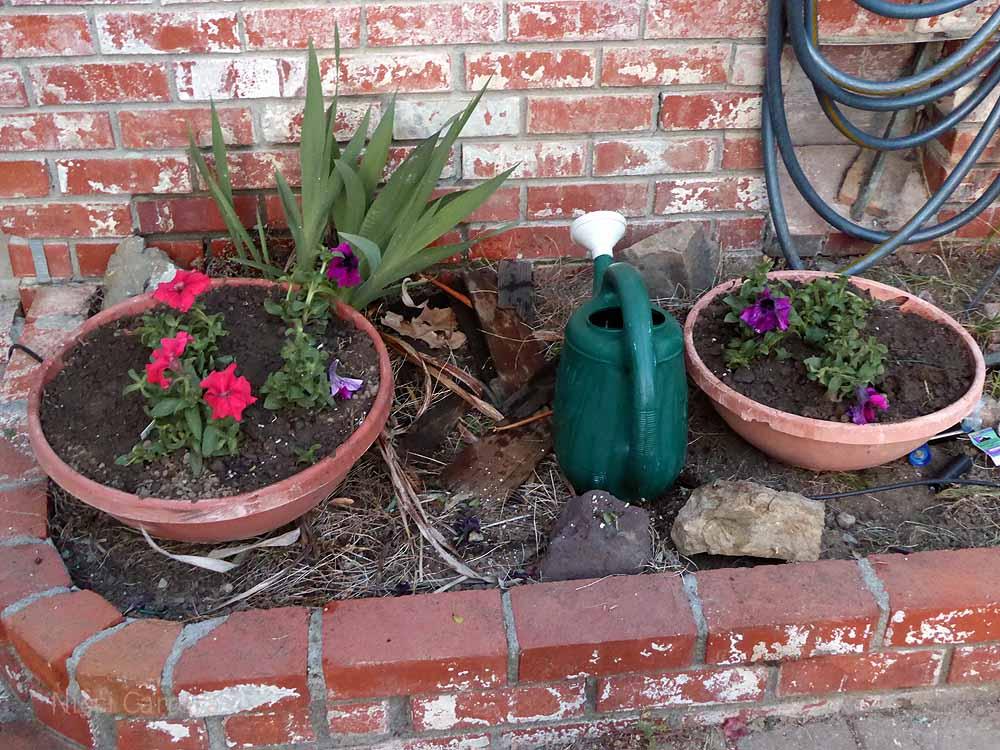 Flower-pots-2