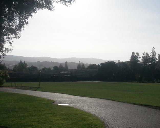 Landscape-park-2