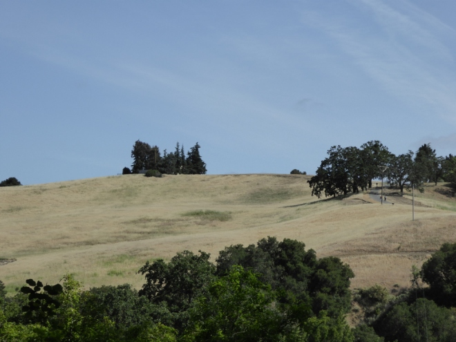 Rancho-San-Antonio-farm-house-close