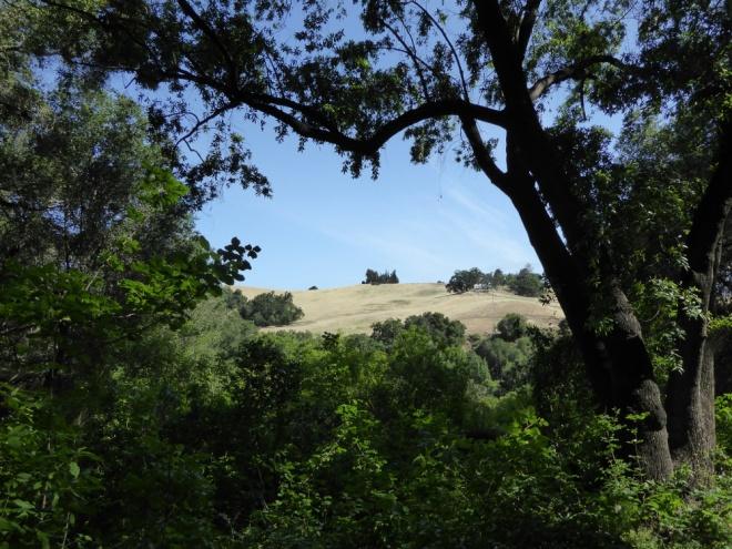 Rancho-San-Antonio-farm-house-far