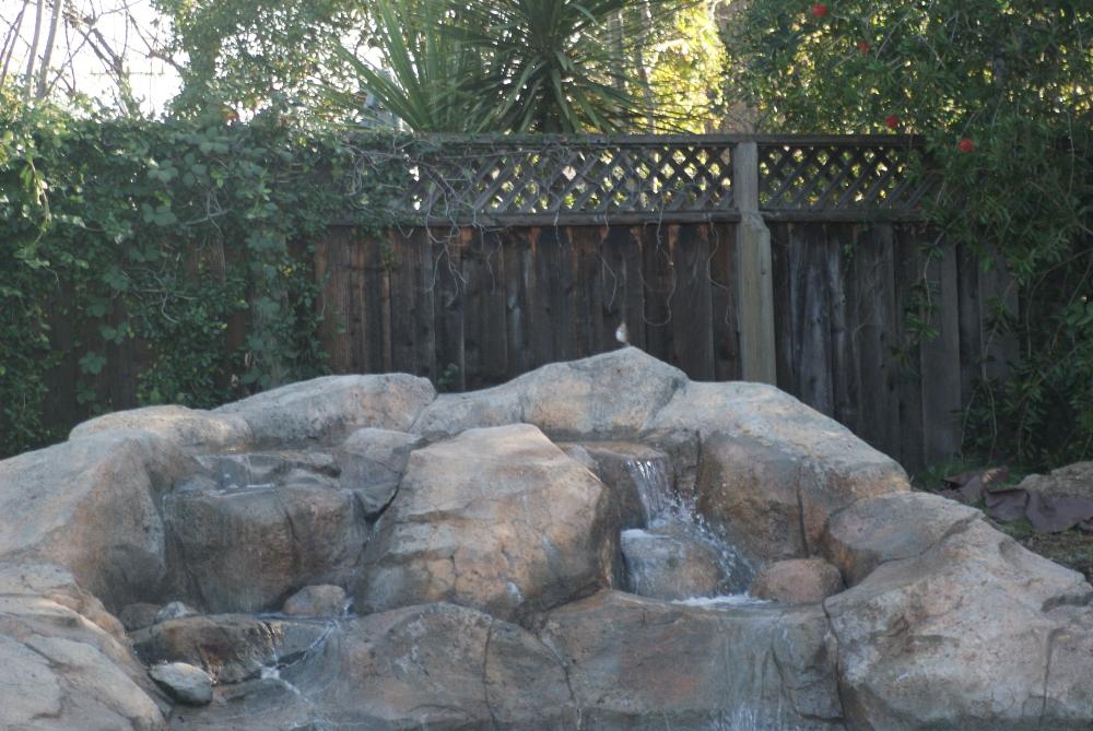 Waterfall during flush years