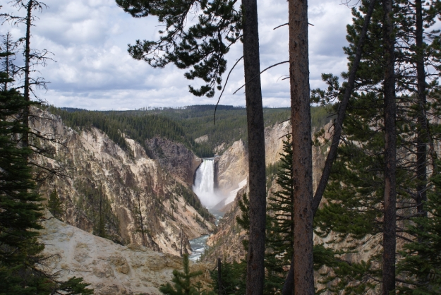 Yellowstone Falls viewed from Artist's Point