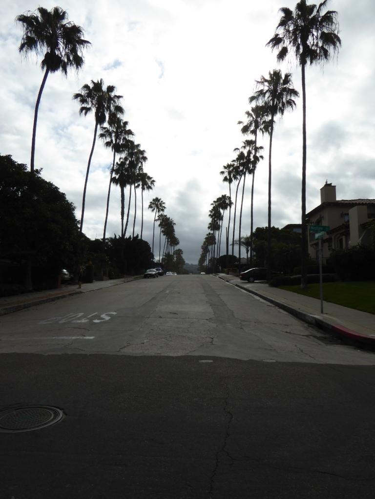 Belvedere Street