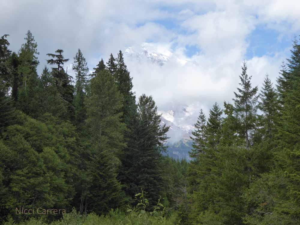 Mount-Rainier1