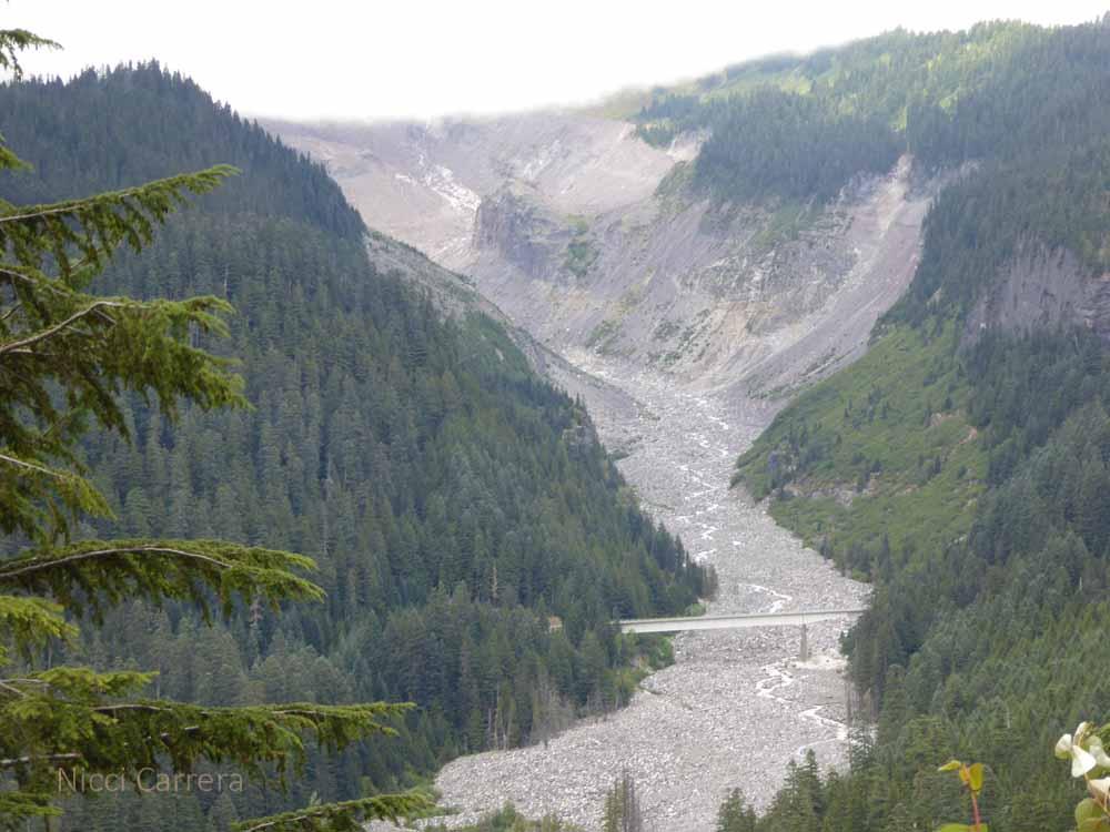 Mount-Rainier3
