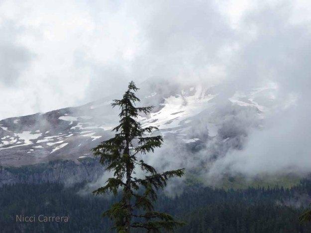 Mount-Rainier4