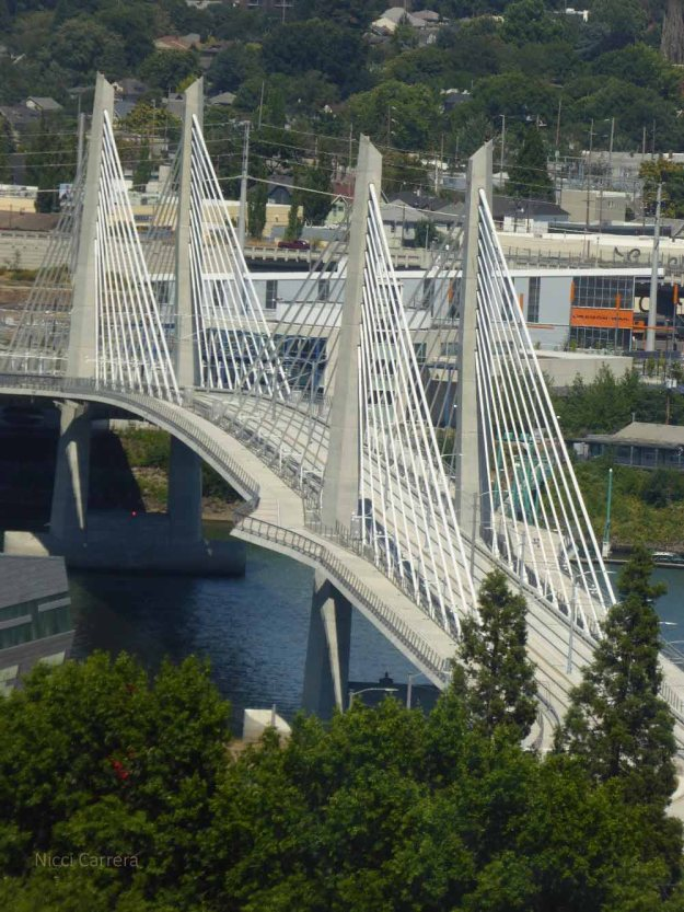 Tilikum Crossing from the sky tram