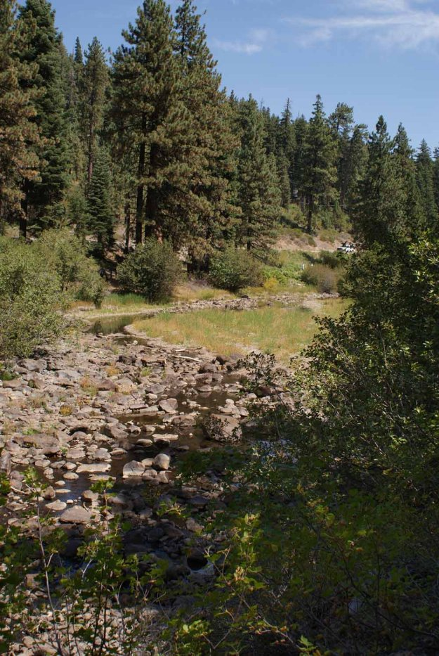 The Truckee River Bed