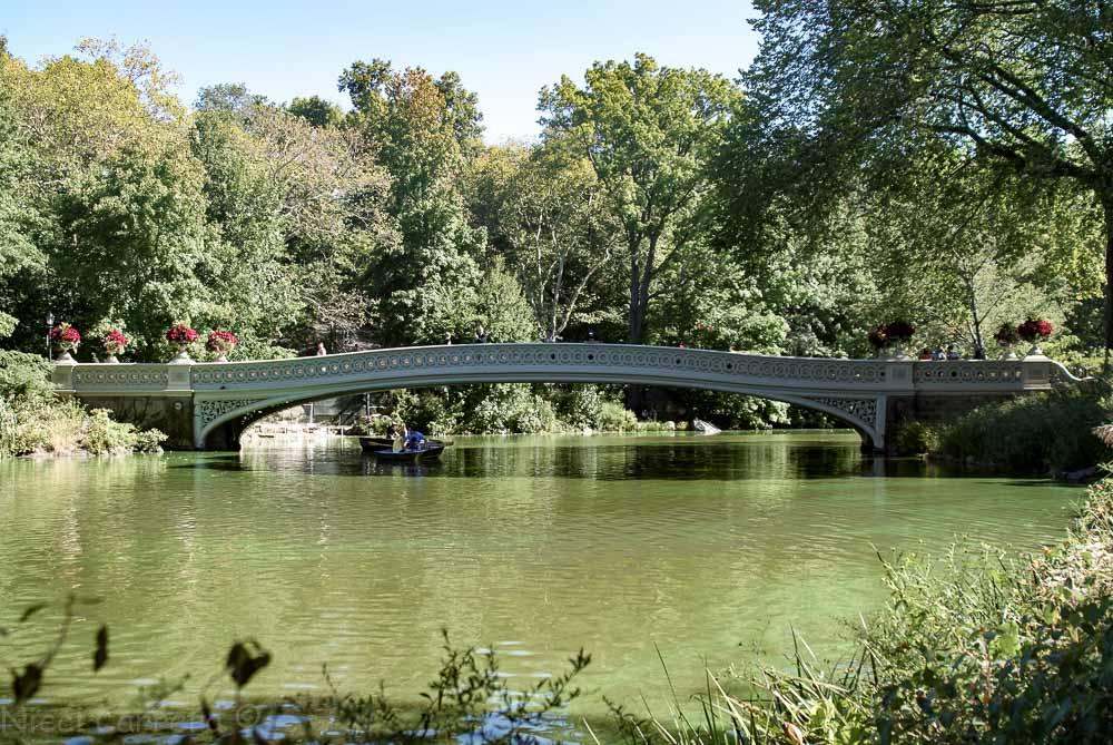 The Bow Bridge, Central Park