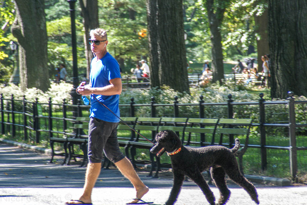 Walking with your bestie in Central Park