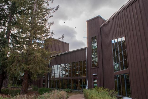 Saratoga library