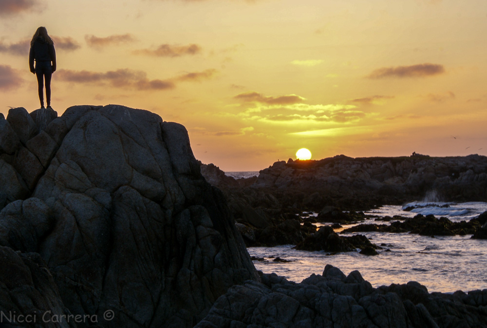 Person watching the sunset in Monterey California