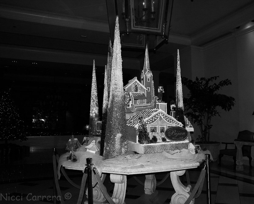 The Fairmont monochrome-1