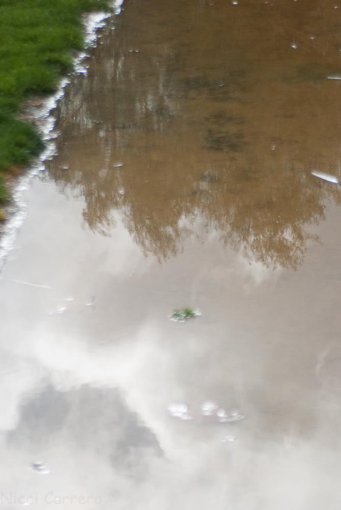 Rain in California-1