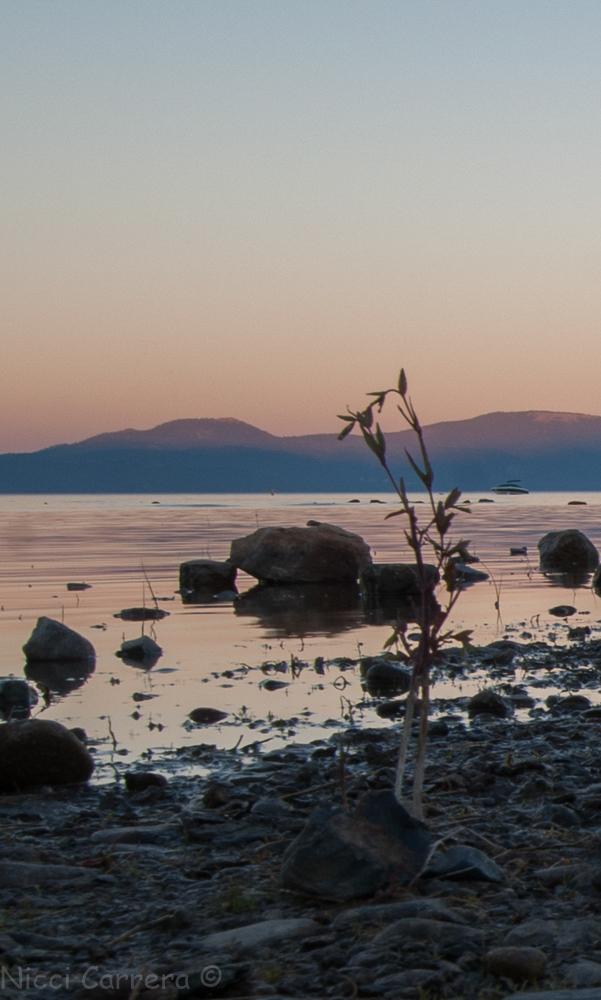 Tahoe sunset-2