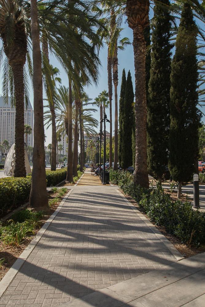 Downtown San Diego-10