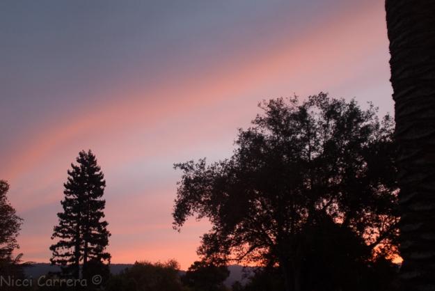 sunset-4