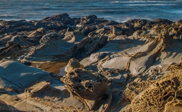 san-gregorio-state-beach-2